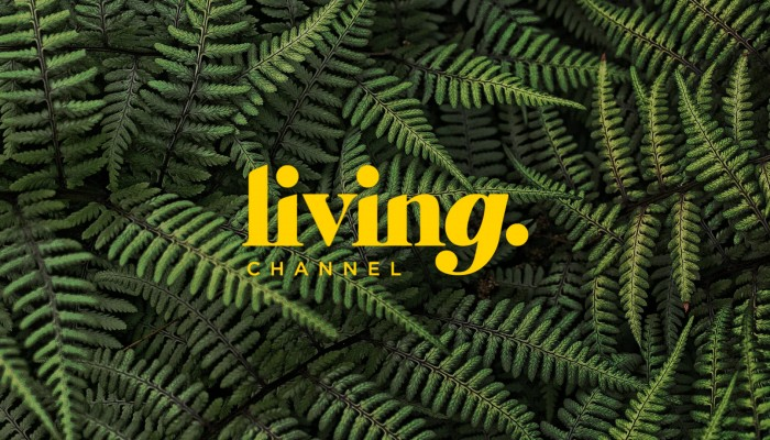 LIVING CHANNEL // CHANNEL BRANDING